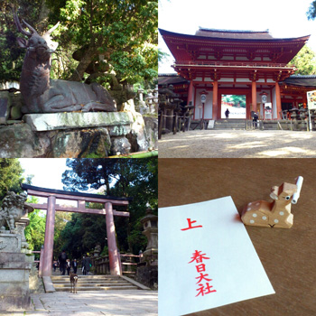 奈良観光~その1~